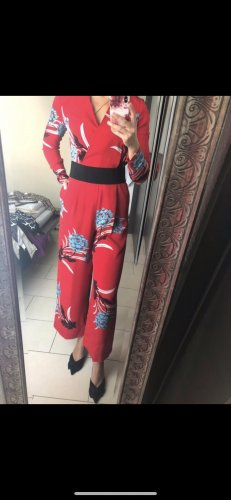 DvF Overall