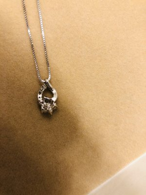Christ Necklace silver-colored