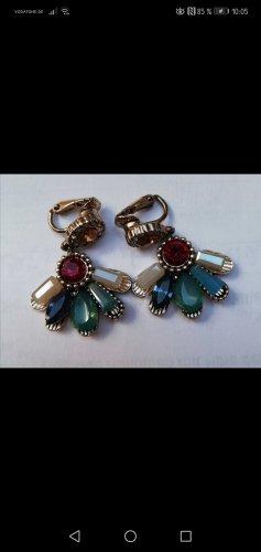 Accessoires Earclip multicolored