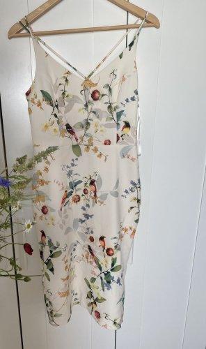 Oasis Sukienka koktajlowa Wielokolorowy
