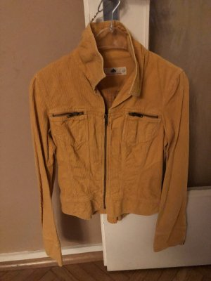 Fornarina Short Blazer gold orange