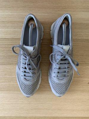 GEOX Sneaker Taupe - Veloursleder