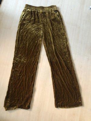 Goldene Hose Samt Zara