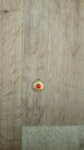 Pendant gold-colored-red