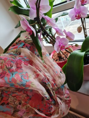 Ashma Pañuelo de seda multicolor Seda