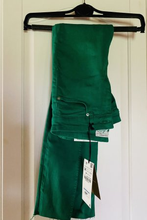 Grüne Jeans Hose