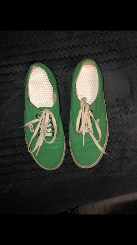 Grüne Vans