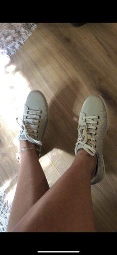 Gucci Sneaker Gr.37