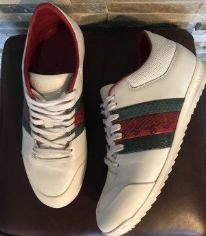 Gucci Sneaker in Gr. 36