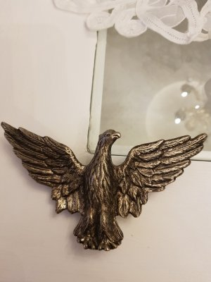 Riemgesp zwart-zilver