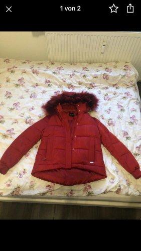 Guess Chaqueta de invierno rojo