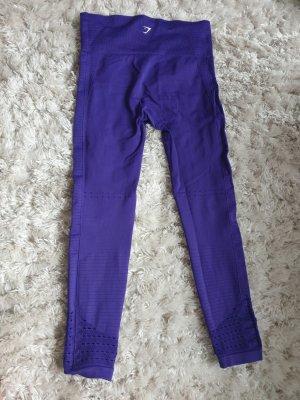 gym shark original violett