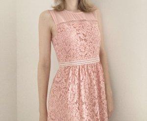 Hallhuber Midi Kleid rosa Spitze 36 S