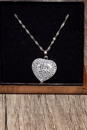 amor Necklace silver-colored