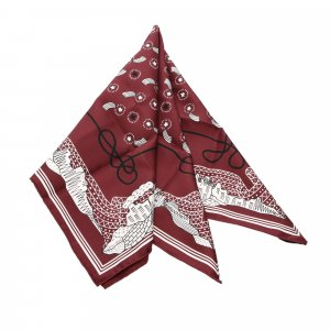Hermes Les Canyons Etoiles Silk Scarf