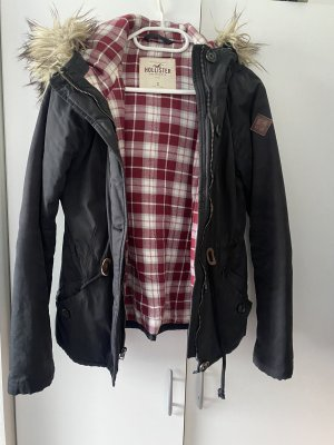 Hollister Winter Jacket multicolored