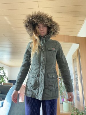 Hollister Parka multicolored