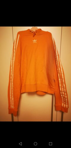 Adidas Cropped Jumper multicolored
