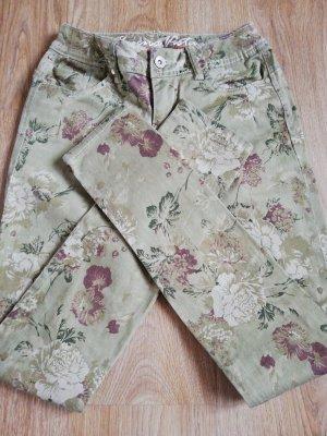 Buena Vista Jersey Pants grey brown-green grey