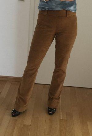 Dolce & Gabanna Corduroy Trousers brown cotton