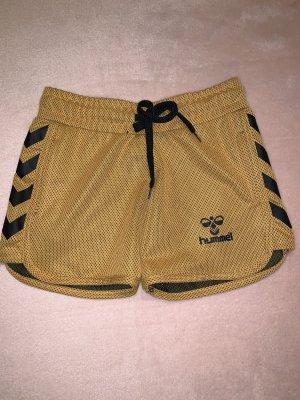 Hummel Pantalón corto deportivo marrón arena