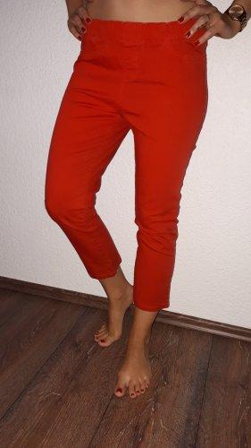 C&A Vaquero 7/8 rojo
