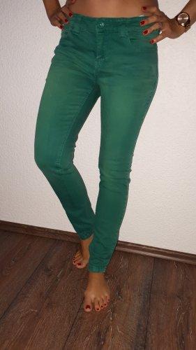 Yessica Vaquero elásticos verde