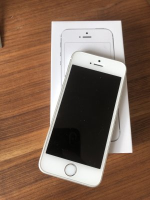 Apple Portachiavi bianco-argento