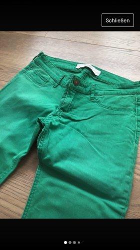 Abercrombie & Fitch Jeans stretch vert-vert clair