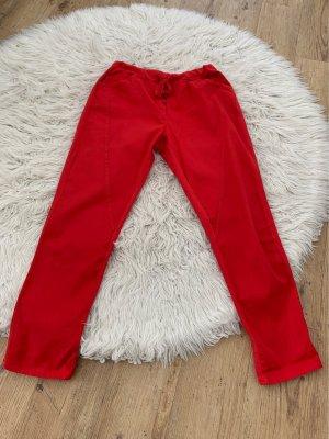 Be Inn Spodnie dresowe czerwony