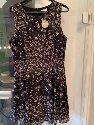 Apricot Sukienka o kroju litery A czarny