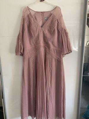 Kleid Abendkleid ASOS Curve NEU