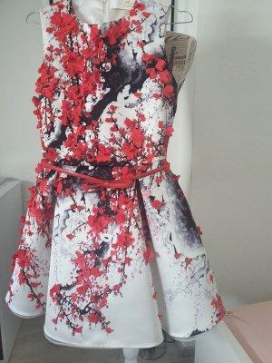 Kleid von Elisabetta Franchi