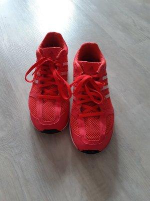 Adidas Originals Sznurowane trampki magenta