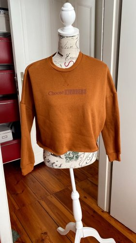 Kurz Cropped Sweatshirt oversized orange