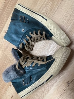 Pier one High Top Sneaker petrol