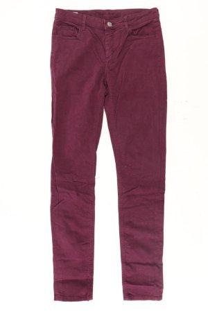 Lacoste Five-Pocket-Hose Größe 34 lila