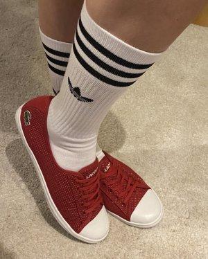 Lacoste ZIANE Chunky sneaker low weinrot 38