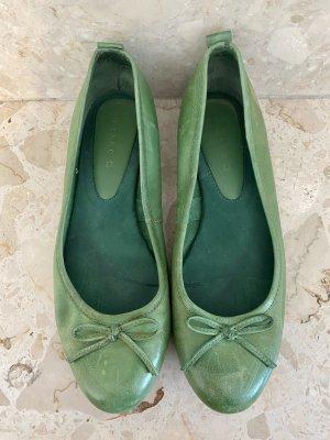 Pesaro Ballerina spuntata verde bosco