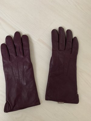 appetizer Leather Gloves lilac