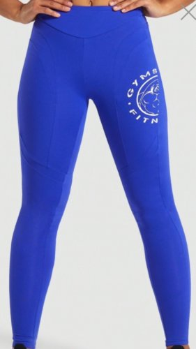 LEGACY FITNESS PANEL LEGGINGS  Blue
