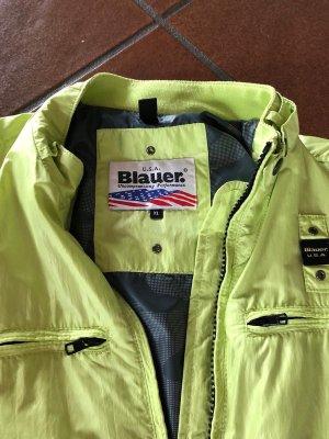 Blauer Veste courte vert