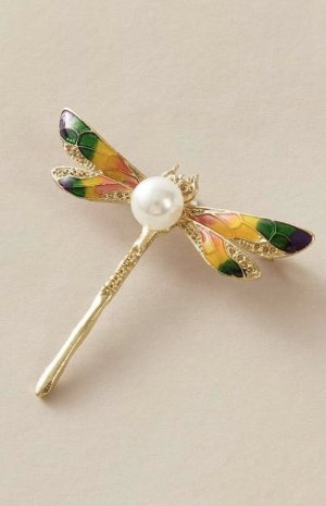 Libelle Brosche bunt gold Perle Emaille Natur