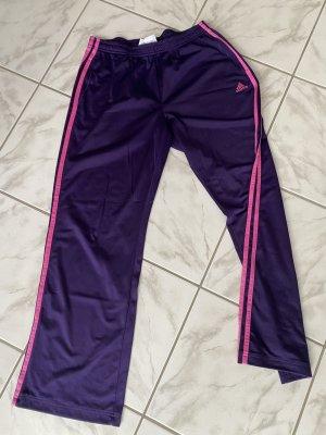 Lila Adidas Sporthose Damen Gr. 40