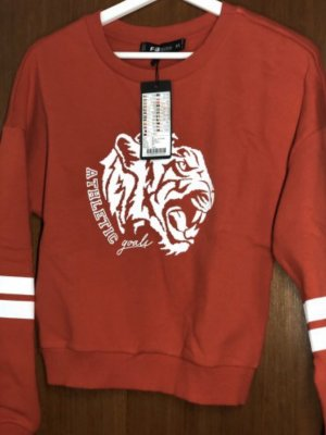 Lion Sweater rot