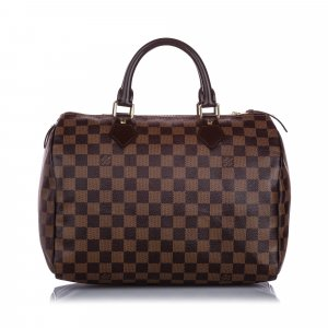 Louis Vuitton Damier Ebene Speedy 30