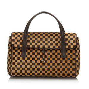Louis Vuitton Damier Sauvage Lionne