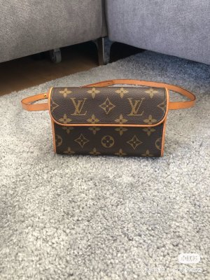 Louis Vuitton Bumbag brown-light brown