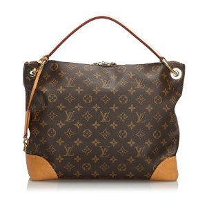 Louis Vuitton Monogram Berri PM