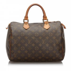 Louis Vuitton Monogram Speedy 30